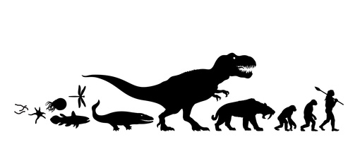 dinosaur vs homo sapiens: how ro evolve and survive to market changes